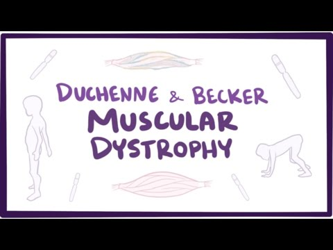 Muscular Dystrophy Explained