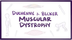 Duchenne & Becker muscular dystrophy - causes, symptoms, treatment & pathology
