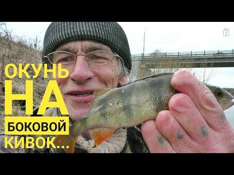 Окунь на боковой кивок. Успенское. Москва река. Рыбак Андрей Николаев.