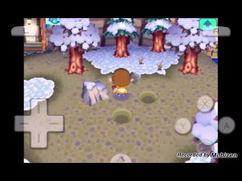 Animal crossing wild world: the money rock