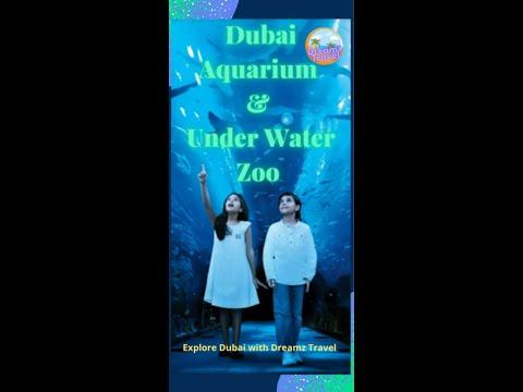 DUBAI AQUARIUM #SHORTS #Exploring DUBAI AQUARIUM & UNDERWATER ZOO – #SHARKS 🦈 – #CROC 🐊 #