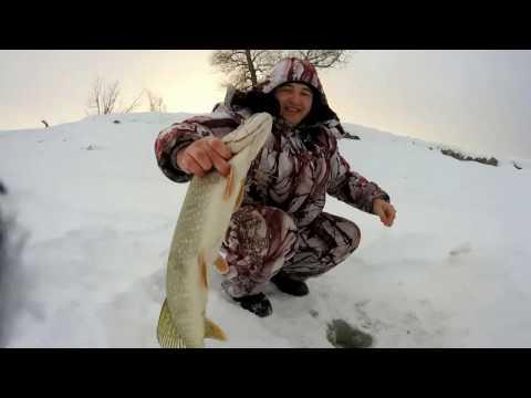 рыбалка в омске 2017 год
