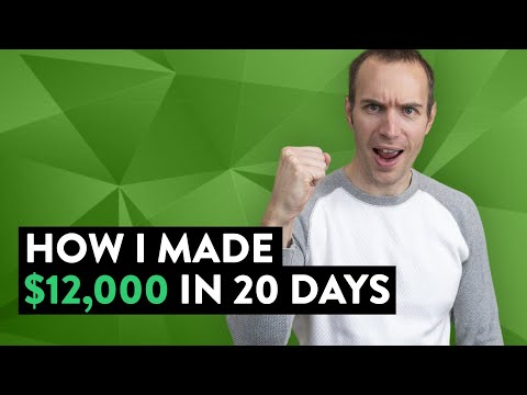 How I Made $12,000 in 20 Days (Make Money Online)