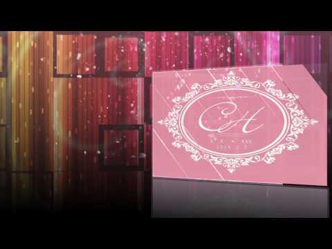 logo, hoa tiet