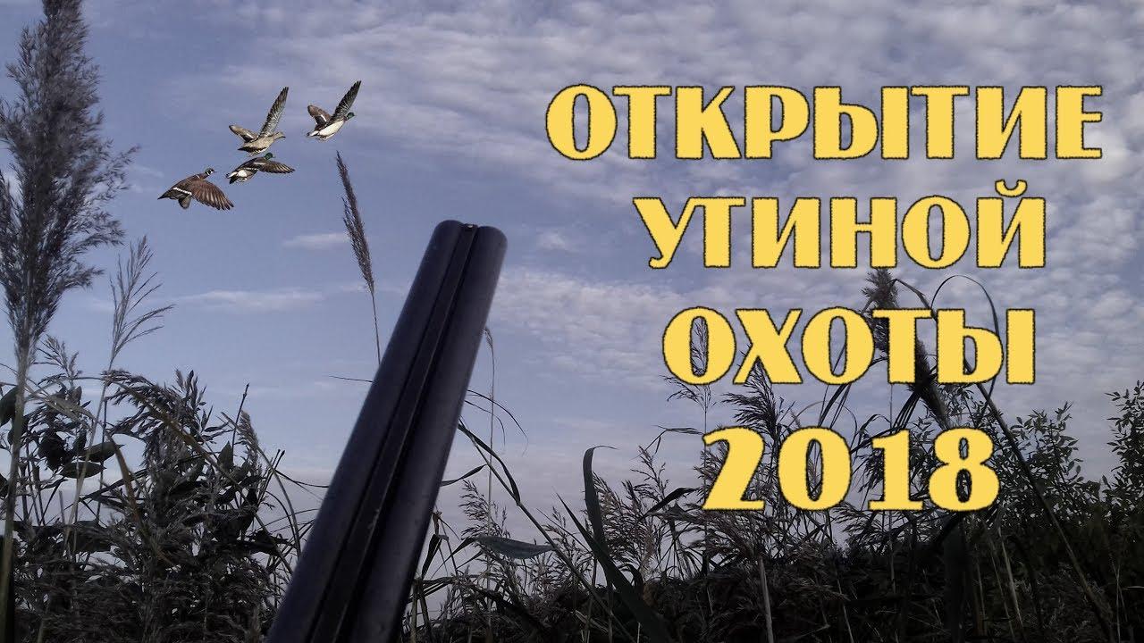 #утинаяохота #duckhunting Открытие утиной охоты 2018.