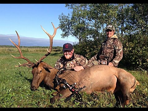Archery Elk Hunting: Screaming Success - 2.3 - Interlake Outdoors