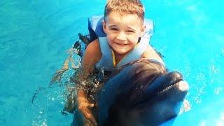 ПЛАВАЕМ С ДЕЛЬФИНАМИ в Большом Бассейне Swiming with the dolphins