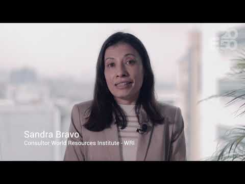 Sandra Bravo - Consultor World Resources Institute -WRI