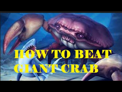 how to defeat giant crab in Hungry Shark Evolution