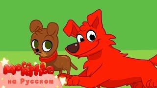 Мой Волшебный Питомец Морфл│Морфл и щенок │ мультфильмы для детей│Сказки