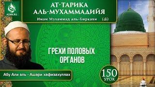 «Ат-Тарика аль-Мухаммадийя». Урок 150. Грехи половых органов | Azan.ru