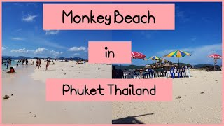 Very relaxing | Monkey beach | Beach in Phuket Thailand