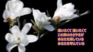 木蘭の涙 スターダスト・レビュー 小田和正(オリジナル歌手) 作詞:山...