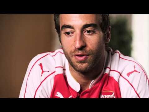 Mathieu Flamini: Arsenal Albums