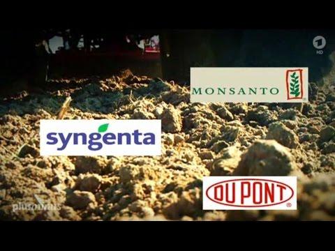 Plusminus(ARD): Patent auf Tomaten: Wie Schutzrechte ausgehöhlt werden (21.10.15)