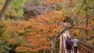 加山雄三小檔案藝名:加山雄三kayama Yuzo 本名:池端直亮筆名(作曲):...
