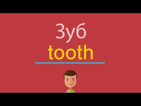 Как будет по английски зубы