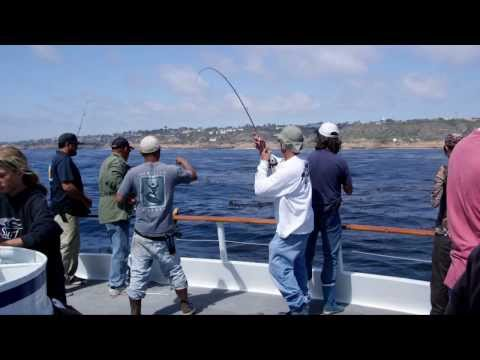 Half Day Fishing On The Dolphin In San Diego