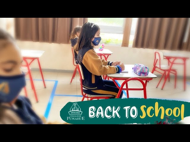 Webinar Back to School - Pumahue Puerto Montt