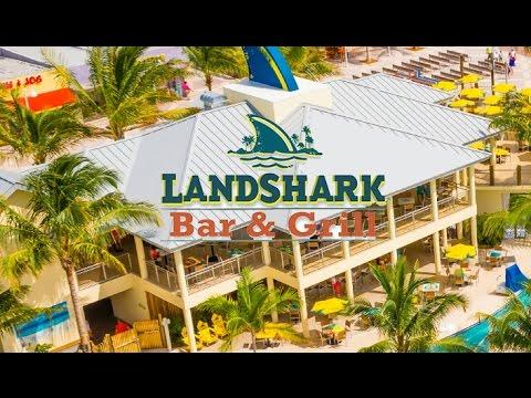 Landshark Bar Grill Hollywood Florida Global Guides