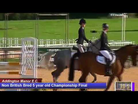 British Young Horse Showjumping Championships Non British 5YO Final - Sunday 20th August 2017