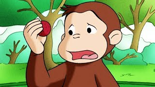 Georges le Petit Singe 🐵Le Stand De Limonade 🐵Saison 1 🐵Dessin Animé 🐵Animation Pour Enfants