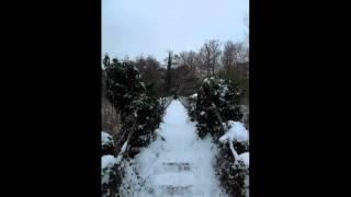 Absinthropy - Das Model (Kraftwerk Cover)