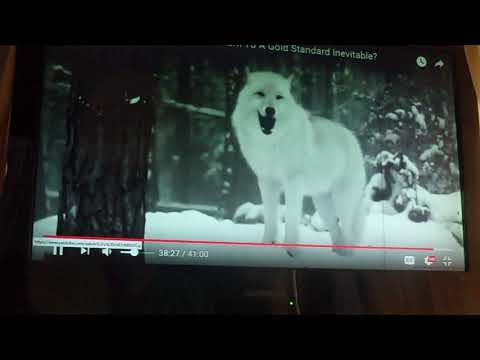 Why wolves in Yellowstone?