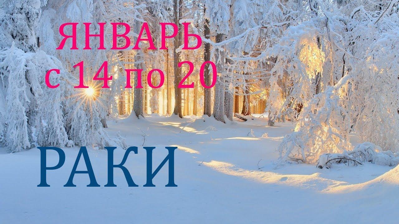 РАКИ. ТАРО-ПРОГНОЗ на НЕДЕЛЮ с 14 по 20 ЯНВАРЯ. 2019.