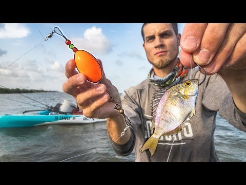 Fishing With LIVE PINFISH And Popping Cork