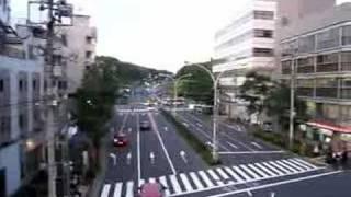 Walk by Yoyogi Park