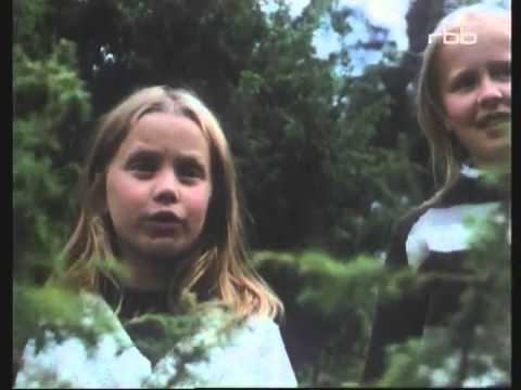 Die Kinder vom Mühlental 09 - 1 Die wilden Schweine
