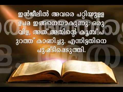 മലയാളം സൂറ - Malayalam Quran Translation