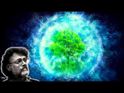 Terence Mckenna - The Crisis in Consciousness