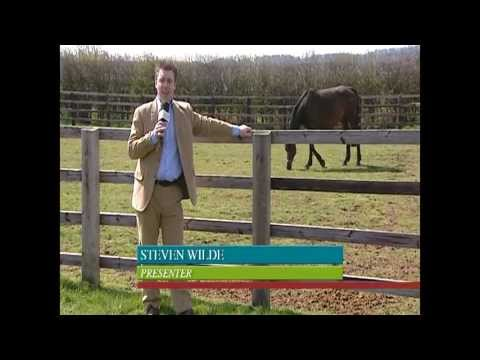 Showjumping Canter Banter Season 1 Episode 2 - 2008