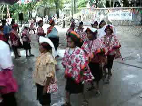 Danza de mujeres teenek