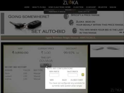 Zloka Zlauction Auto Bid Explanation - How to set up auto bids