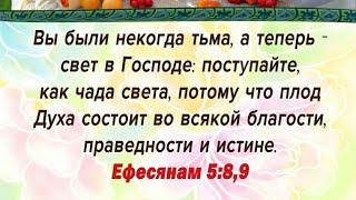 Иисус - мое вдохновение В золотых лучах откровение! Иисус Лоза 2020.08.04 #АрхиепископСергейЖуравлев