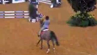 Flying Pony Rider