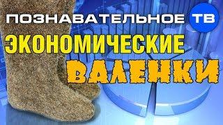 Экономические валенки (Познавательное ТВ, Валентин Катасонов)