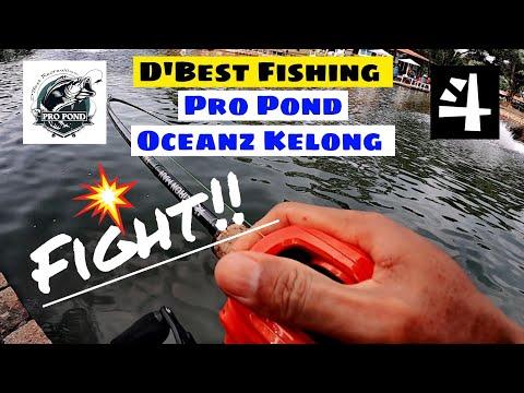 嫌鱼塘太大?没关系,这里还有小的。Singapore D'best Fishing Pro Pond.