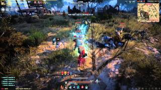 Black Desert Online High Level Witch Gameplay