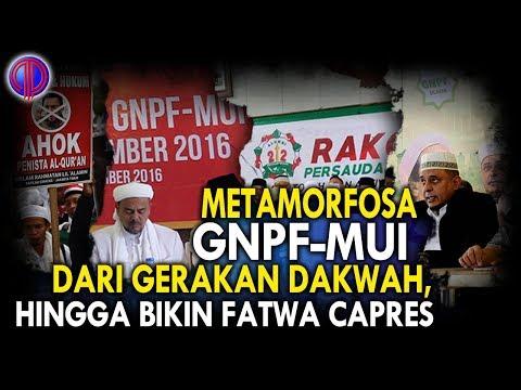 Metamorfosa GNPF MUI: dari Gerakan Dakwah, Hingga Bikin Fatwa Capres Mp3