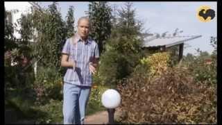 видео Ландшафтное освещение участка: светильники и дизайн