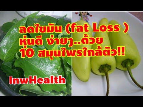 ลดไขมัน (fat Loss ) หุ่นดี ง่ายๆ..ด้วย 10 สมุนไพรใกล้ตัว!! [lnwHealth]