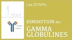 Hypogammaglobulinémie - #09 - STAFFs Saint Camille