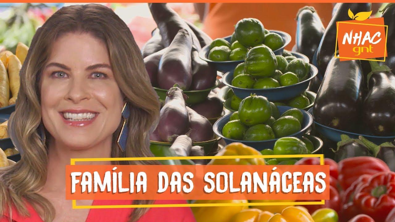 🍅 TOMATE, BATATA, BERINJELA E JILÓ: saiba tudo sobre a família das solanáceas   Cozinha Prática