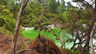 Путешествие по Новой Зеландии в ноябре(Новая Зеландия в ноябре. Отзыв о путешествии здесь: http://forum.awd.ru/viewtopic.php?f=1191&t=265530., 2015-12-03T19:24:13.000Z)
