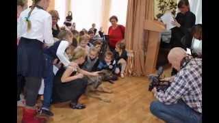ВЕРНОСТЬ Днепропетровск Уроки доброты в СШ № 9