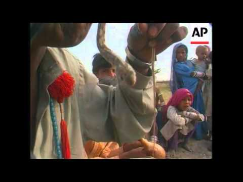 PAKISTAN: SNAKE CHARMERS OF THE THAR DESERT